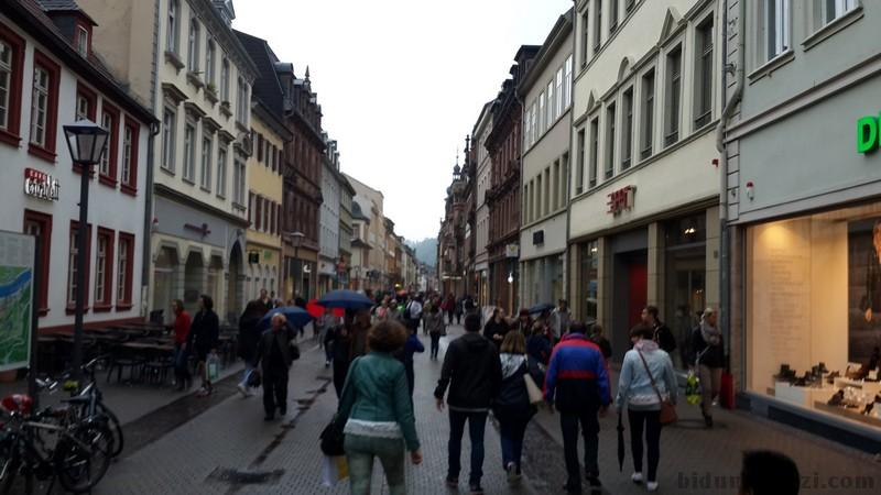 Heidelberg Oldcity (Oldtown)